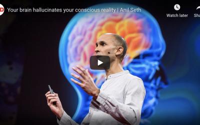 Your brain hallucinates your conscious reality   Anil Seth
