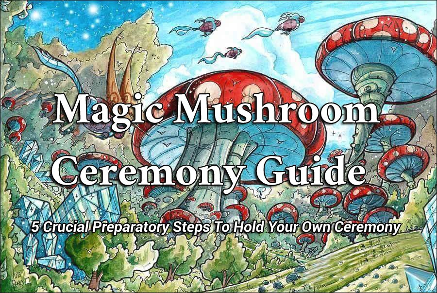Magic Mushroom Ceremony Guide   5 Crucial Steps To Hold Your Own Ceremony